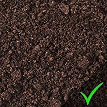 Rich Fluffy Black Dirt