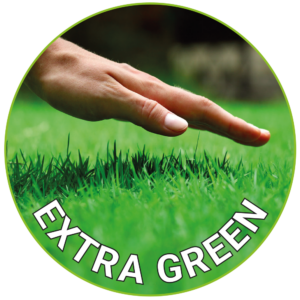 Extra Green Lawn