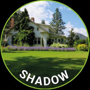 Shadow Lawn