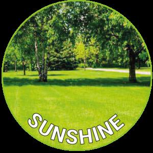 Sunshine Lawn